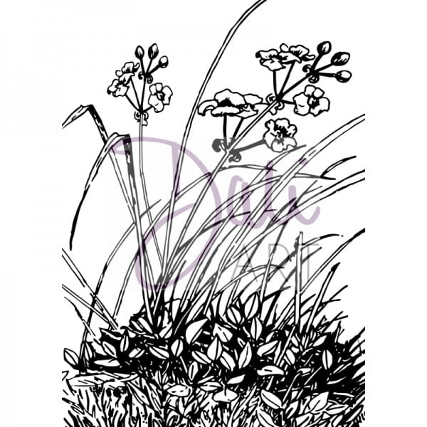 DaliArt - DaliART Clear Stamp Meadow Flowers A6