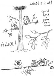 Lindsay Mason Designs - AWOL what a hoot! Clear Stamp