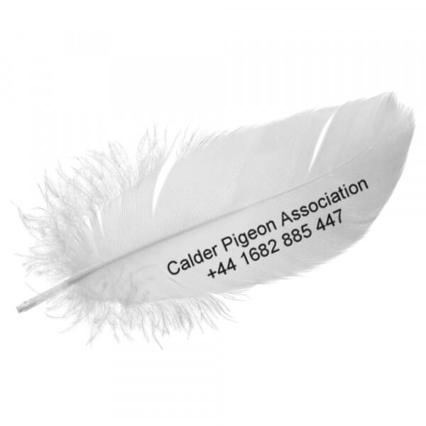 Personalised Pigeon Wing Stamp - 55 x 15 mm
