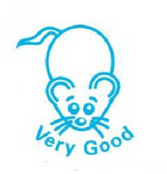 Teachers' Motivation Stamp - VERY GOOD - Mouse