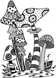 Lindsay Mason Designs - Zendoodles Toadstools Ready To Go Clear Stamps