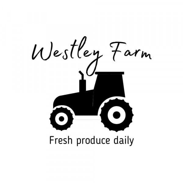 Custom Packaging Logo & Name Stamp