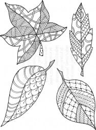 Lindsay Mason Designs - Leaves Set Ready To Go - Clear Stamp